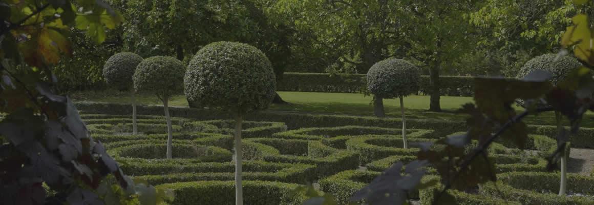 SDS Gardens & Heritage